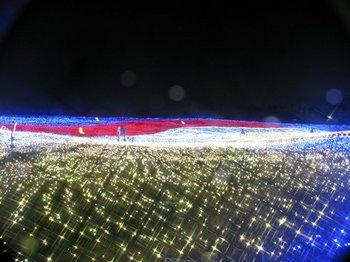 長島フラワーパーク.jpg